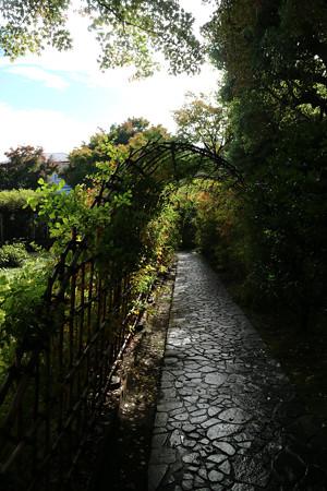 殿ヶ谷戸庭園 (3)