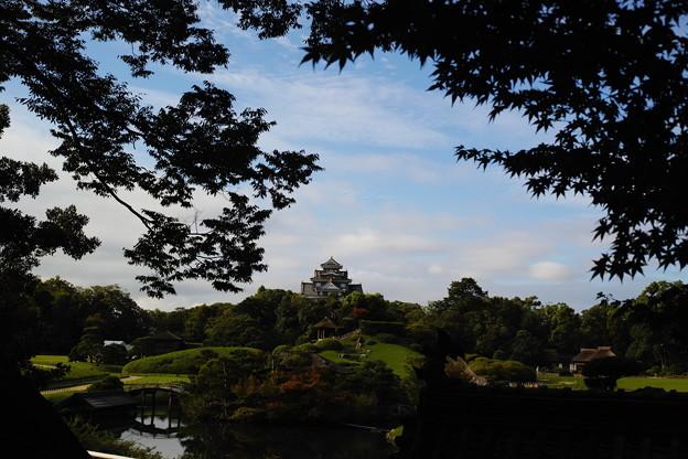 Photos: 涼しい御庭