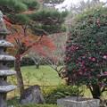 Photos: 吉備路の秋