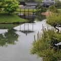 Photos: 松