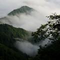 Photos: 野迫川雲海 20140813-2