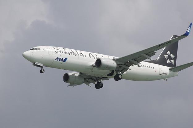 飛行機 ANA スターアライアンス