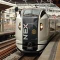 E259系マリンエクスプレス踊り子75号戸塚通過!