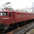 EF81 141(長岡)