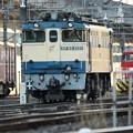 Photos: EF65 2121 宇都宮貨物(タ)5番停車