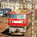 写真: 金太郎15号機牽引高速貨物6096レ 桃太郎136号機に見送られ宇都宮貨物(タ)通過