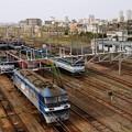 新鶴見区出動待ちの電気機関車たち