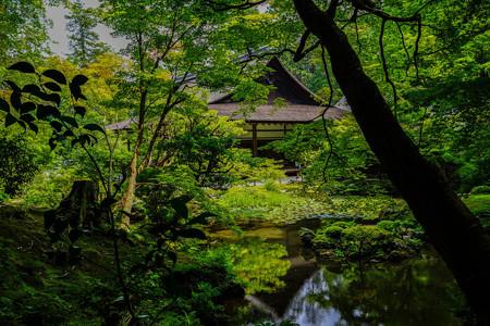 南禅寺 南禅院庭園1