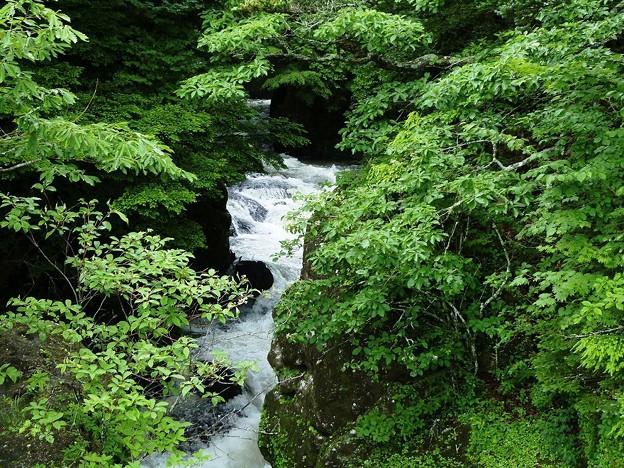 07-140719_激しい湯川の流れ(竜頭橋上) (3)