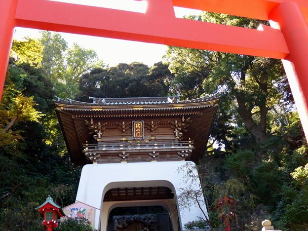 rs-151008_16_朱の鳥居と瑞心門(江の島) (3)