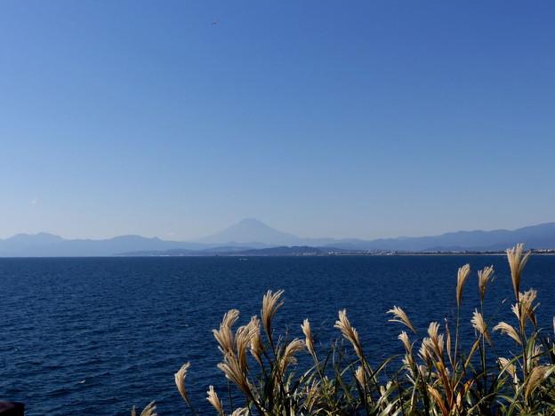 Photos: rs-151008_23_岩屋からの眺め(江の島) (47)