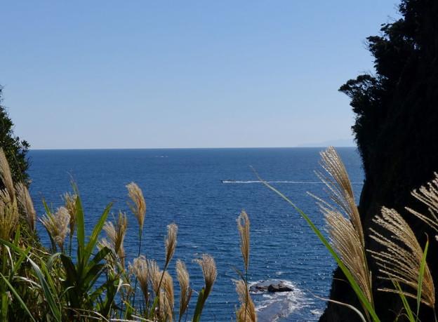 Photos: rs-151008_25_江の島からの眺め(江の島) (1)