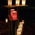 Photos: 灯りと紅葉