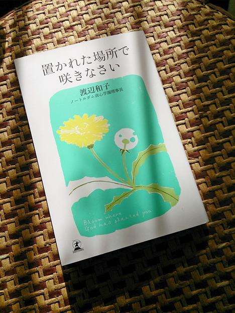 写真: 読書の秋