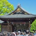 Photos: 亀戸天神社.3