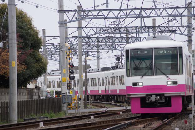 DSC05553