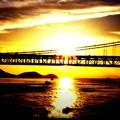 写真: 橋と夕陽