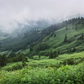 ガス沸く丘陵