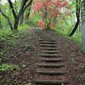 140513-89東北ツーリング・古城山公園・上り