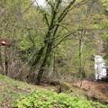 Photos: 140513-130東北ツーリング・湯の又大滝・滝見台