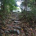 写真: 101119-17階段の上の坂