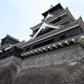 写真: 熊本城