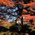 秋色の洋館(2)