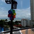 カラフルな風車と眺望。