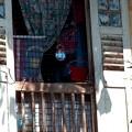 写真: 古民家の窓。C