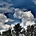 写真: 恐竜のような雲が,近ずいて来た。