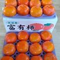 Photos: 茨城産「富有柿」
