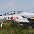 Photos: T-4 サクラが4つ
