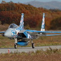 F-15 梅の後は秋真っ盛り