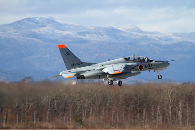 T-4 ギフ 66-5604