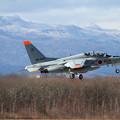 Photos: T-4 ギフ 66-5604