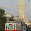 Photos: 阪堺電車とハルカス