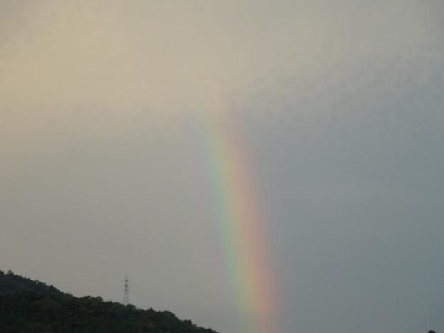 空に消えてゆく虹