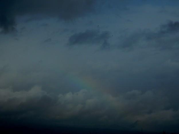 祝福の?虹♪