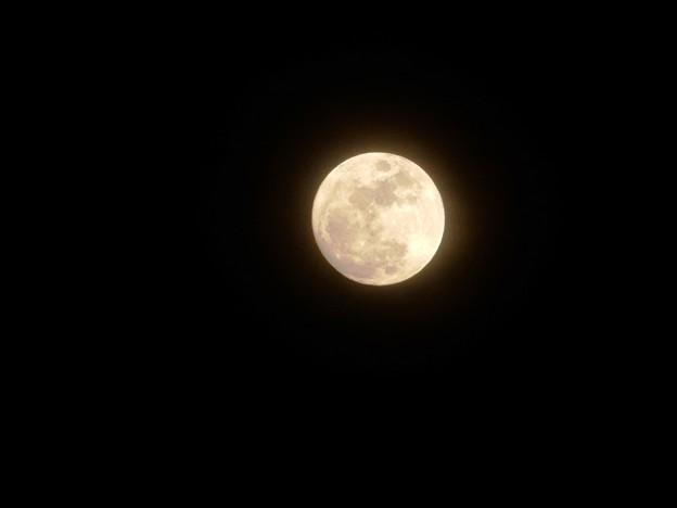 月齢13の月