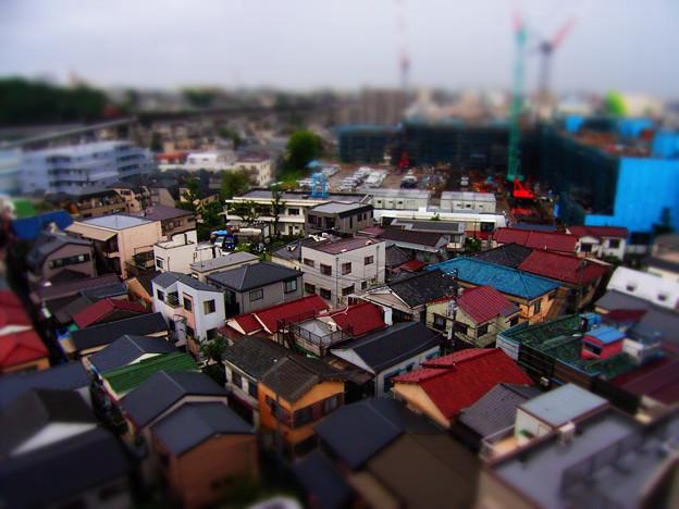 写真: pseudo miniature 20080830