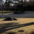 Photos: 本館前の芝