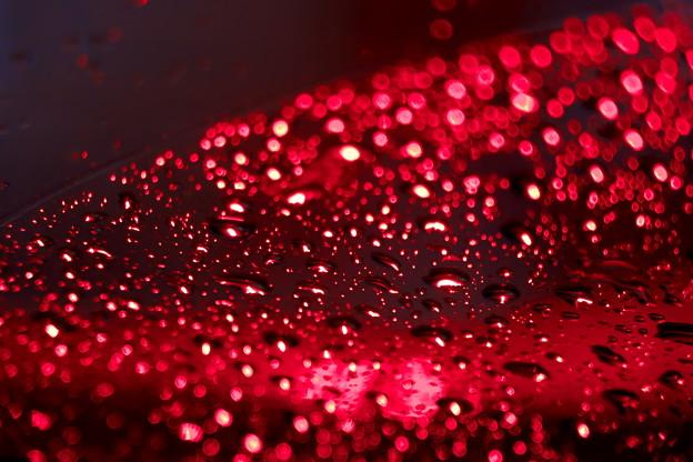 写真: 赤い水玉