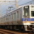 Photos: 南海8000@井原里