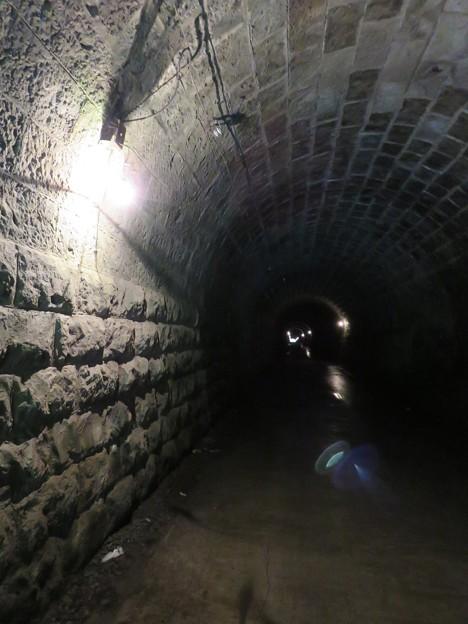 旧天城トンネル06