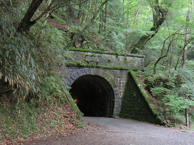 旧天城トンネル08