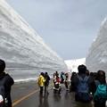 雪の大谷(1)