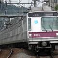 P9050004