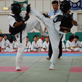 Photos: 2014日本ネパール国際親善拳法 (200)