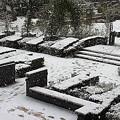 写真: 0114 雪 庭