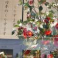 写真: 日本のくりすます~♪